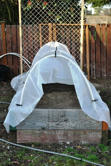 Raised garden bed with hoop house