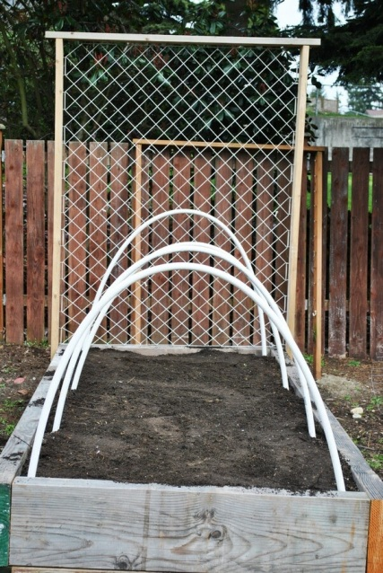 Diy trellis on raised garden bed