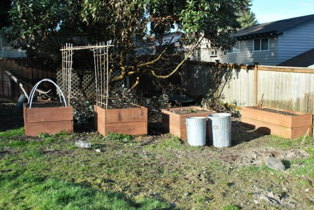 Small raised beds, bamboo trellis and planting in galvanized trash cans