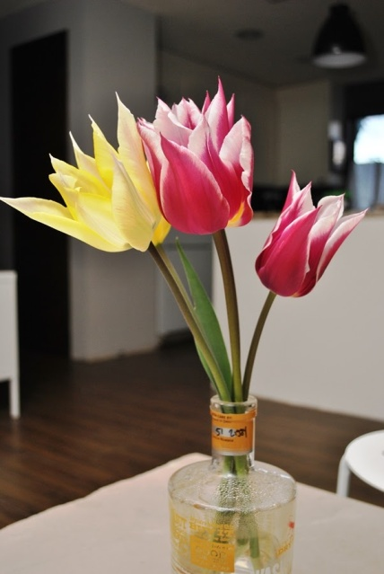 Tulips in a whiskey bottle