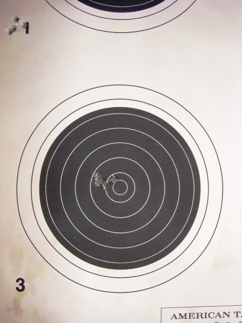 target shot with a 10/22 at 50 yards