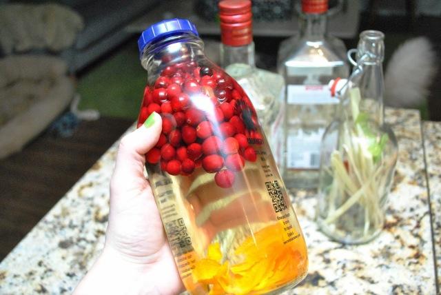 Satsuma-Cranberry Gin