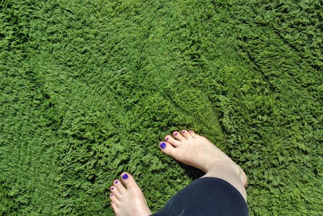 scrubbing a rug with my feet